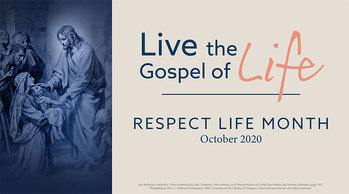 A message for Respect Life Month from Bishop David M. O'Connell, C.M.