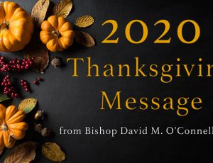 Bishop's Thanksgiving message • Appointments • Chancery schedule • Supporting Catholic schools