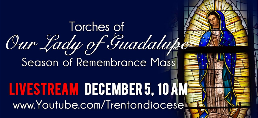 Guadalupe torches • Giving Tuesday update • CAC Leadership Day • Seeds of Hope fundraiser • St. Timothy Award nominees